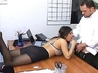 office panty pantyhose